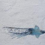 o.T., Eitempera auf Leinwand, 18x24cm, 2009