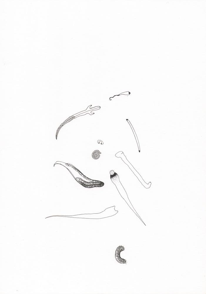 o.T., Tusche auf Papier, 29,7x21cm, 2017